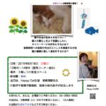 子猫のための通院準備セミナー
